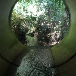 Circulo fluvial